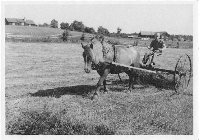 från jordbruket etc 50-60 tal_0003